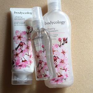 Bodycology bundle